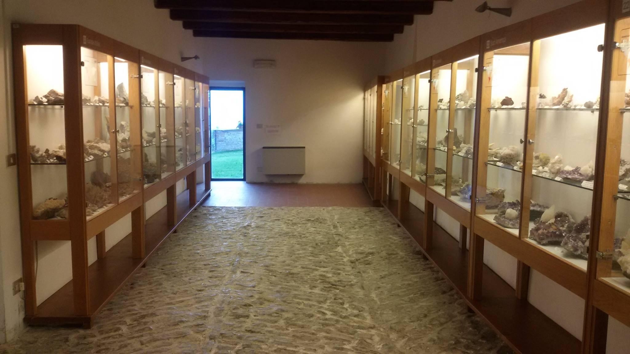 Il museo dei fossili e minerali