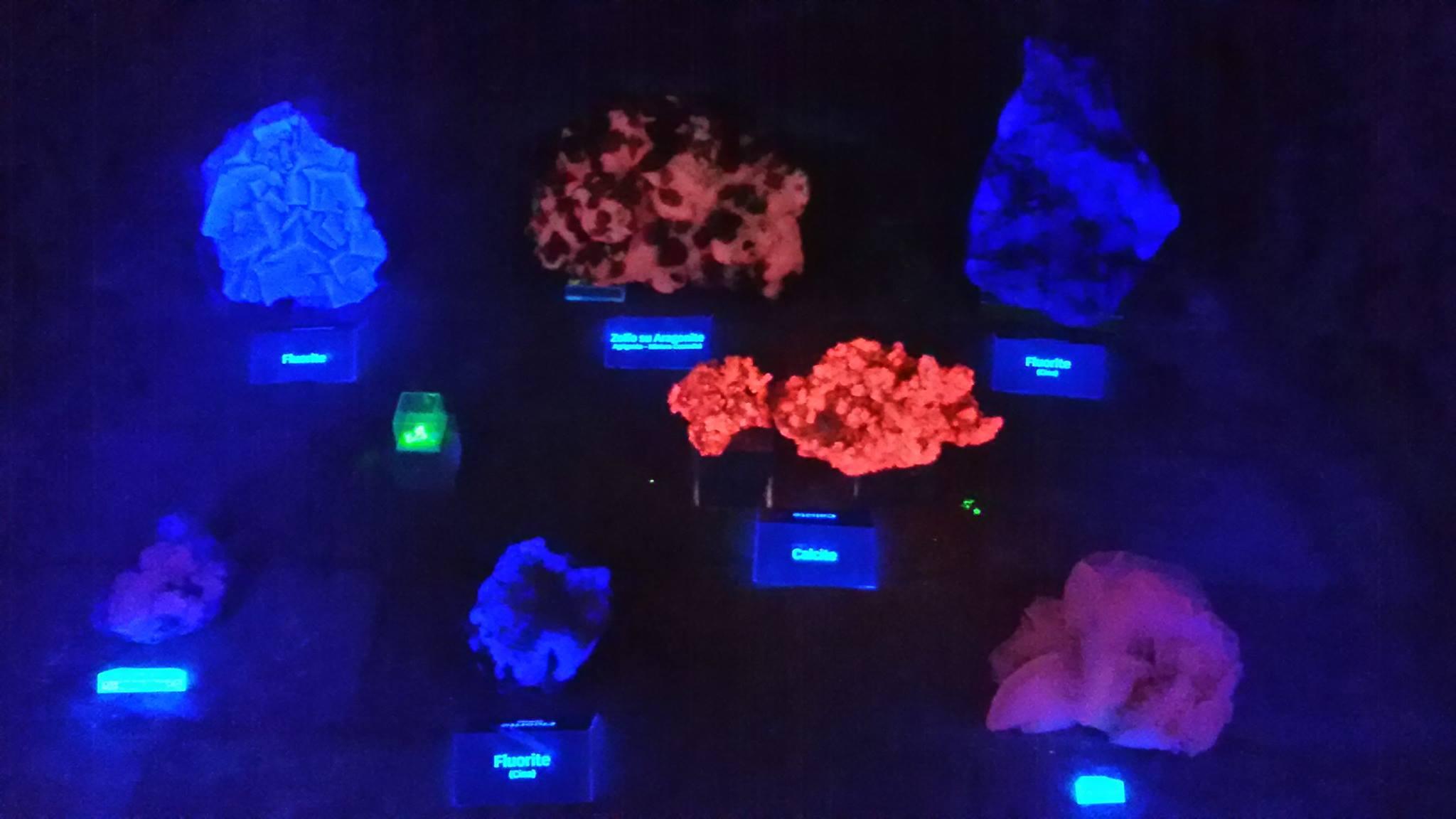 I minerali fosforescenti del museo di Montefalcone