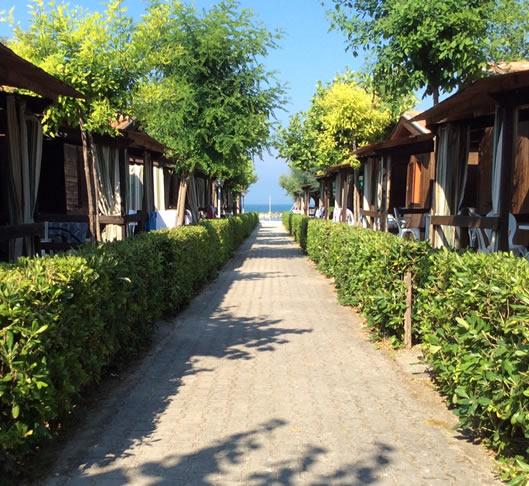 camping girasole marina palmense