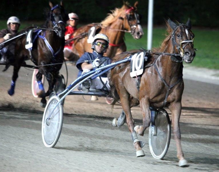 ippodromo San Paolo cavalli trotto