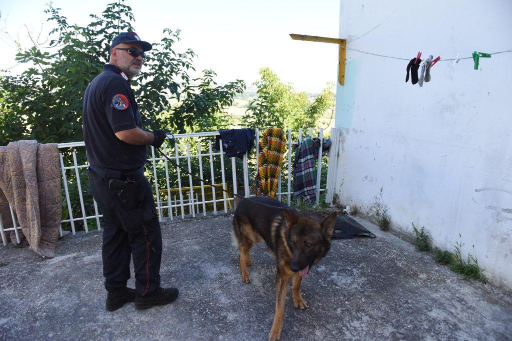 Carabinieri blitz droga controlli cane