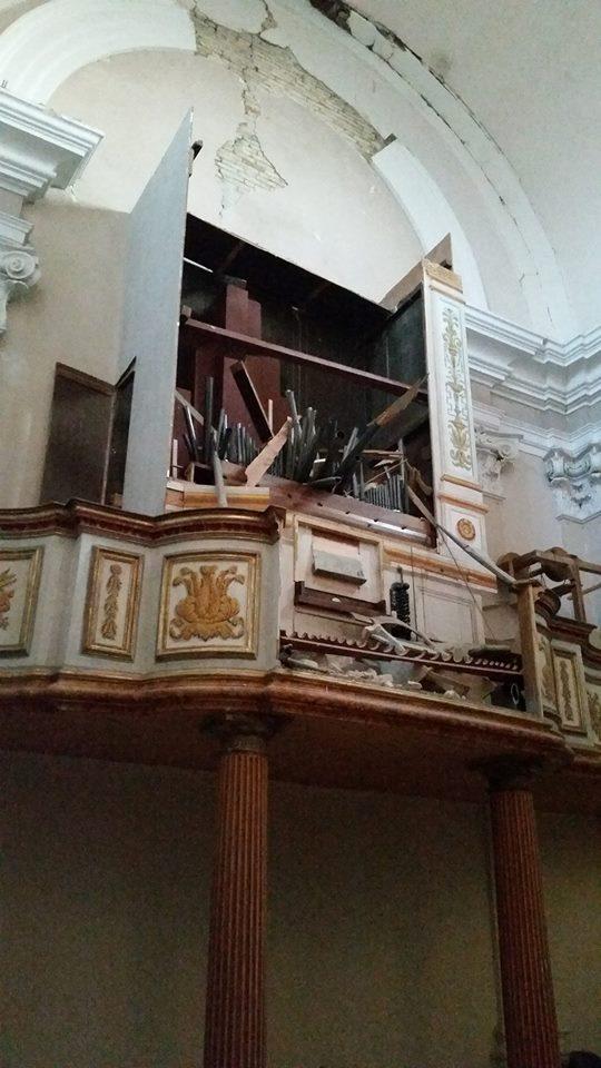 organo distrutto