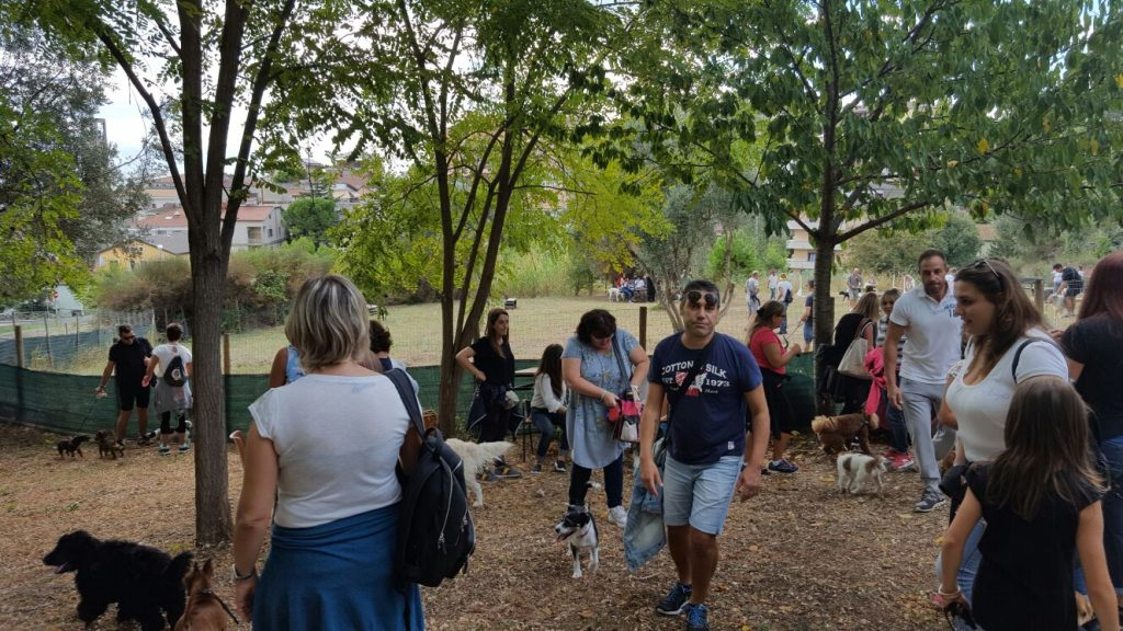 dog-day-porto-santelpidio-10