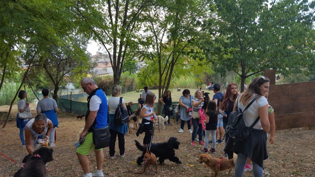 dog-day-porto-santelpidio-11