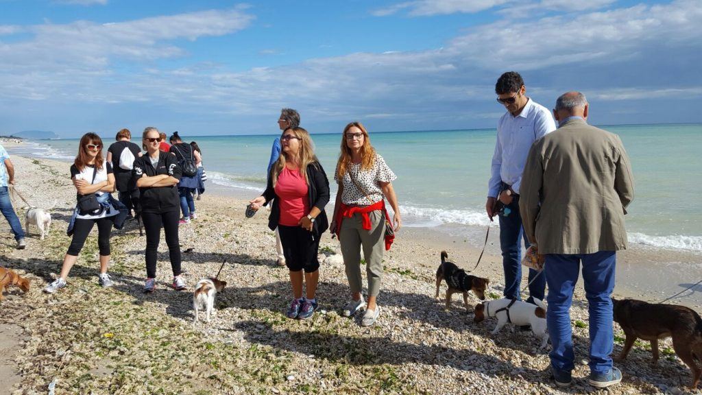 dog-day-porto-santelpidio-4