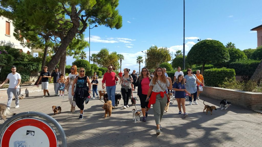 dog-day-porto-santelpidio-6