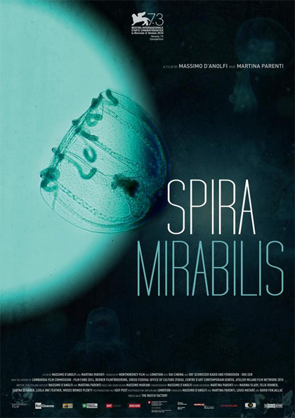 spira-mirabilis