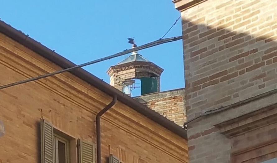 torre-piazzetta